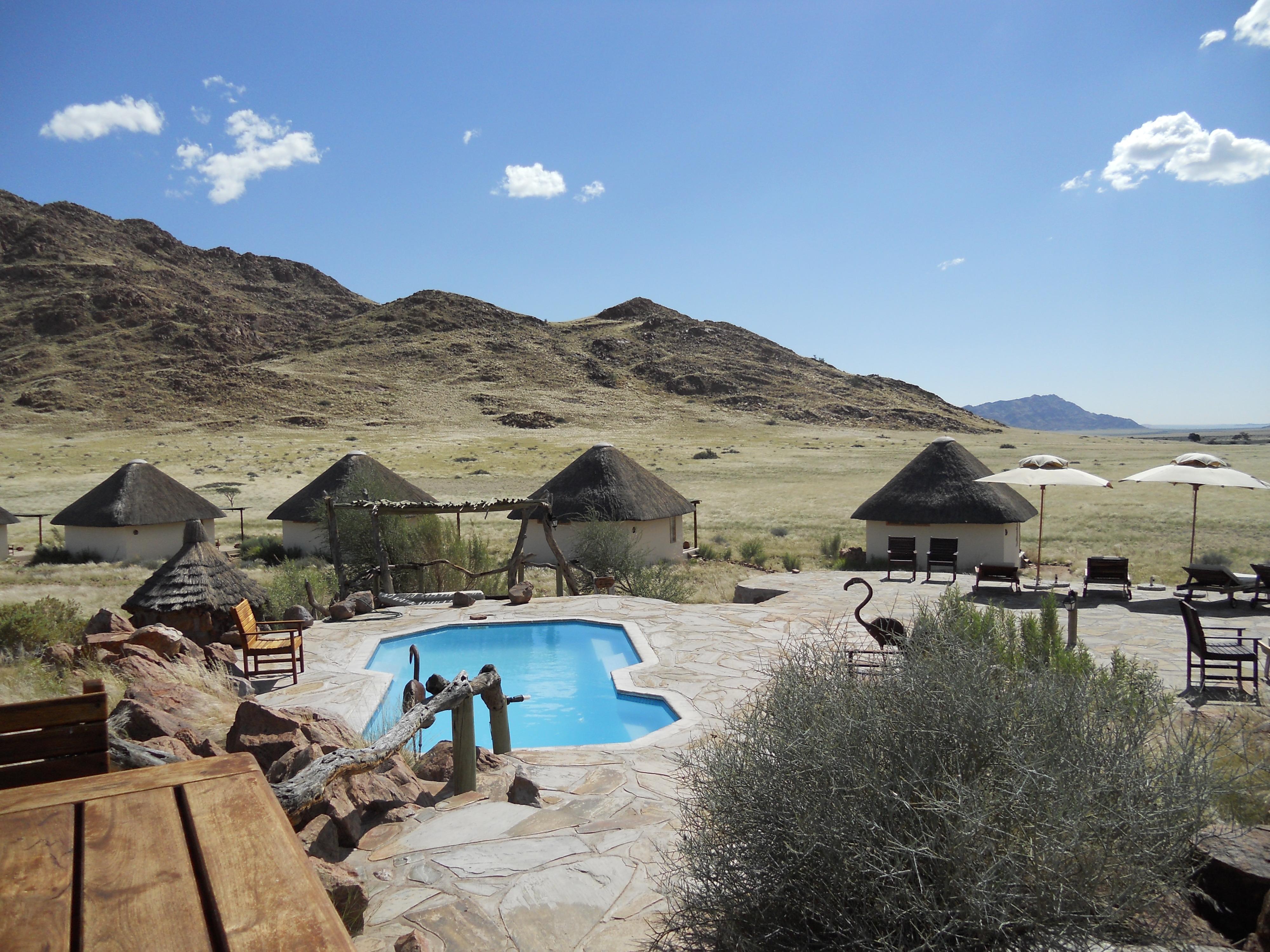 the desert homestead