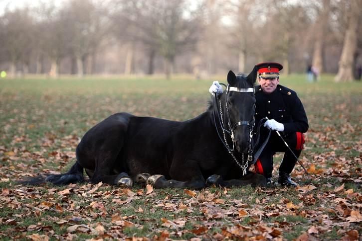 Richard Waygood, Explore Africa with Major Richard Waygood MBE, In The Saddle