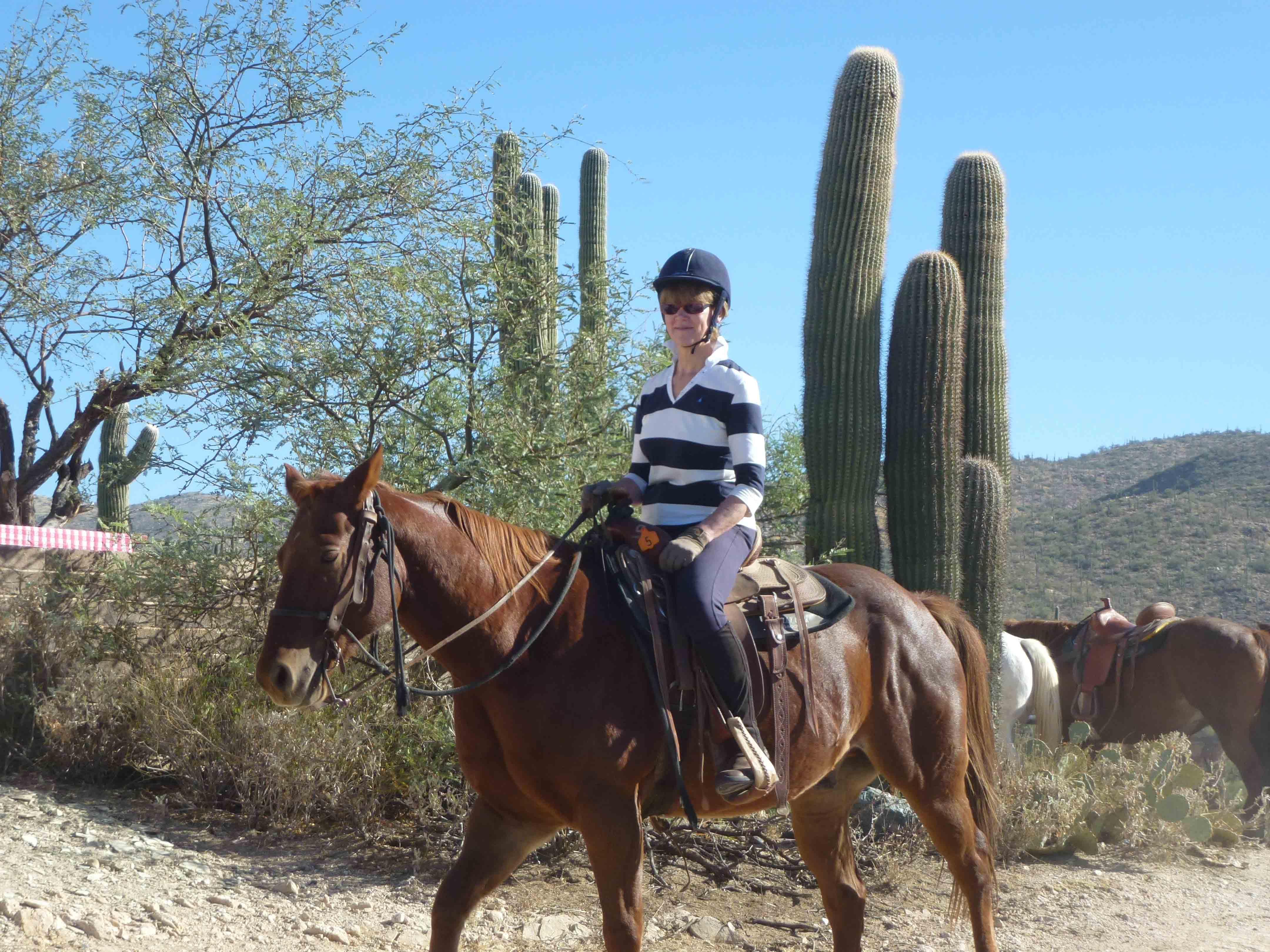 horse riding in california
