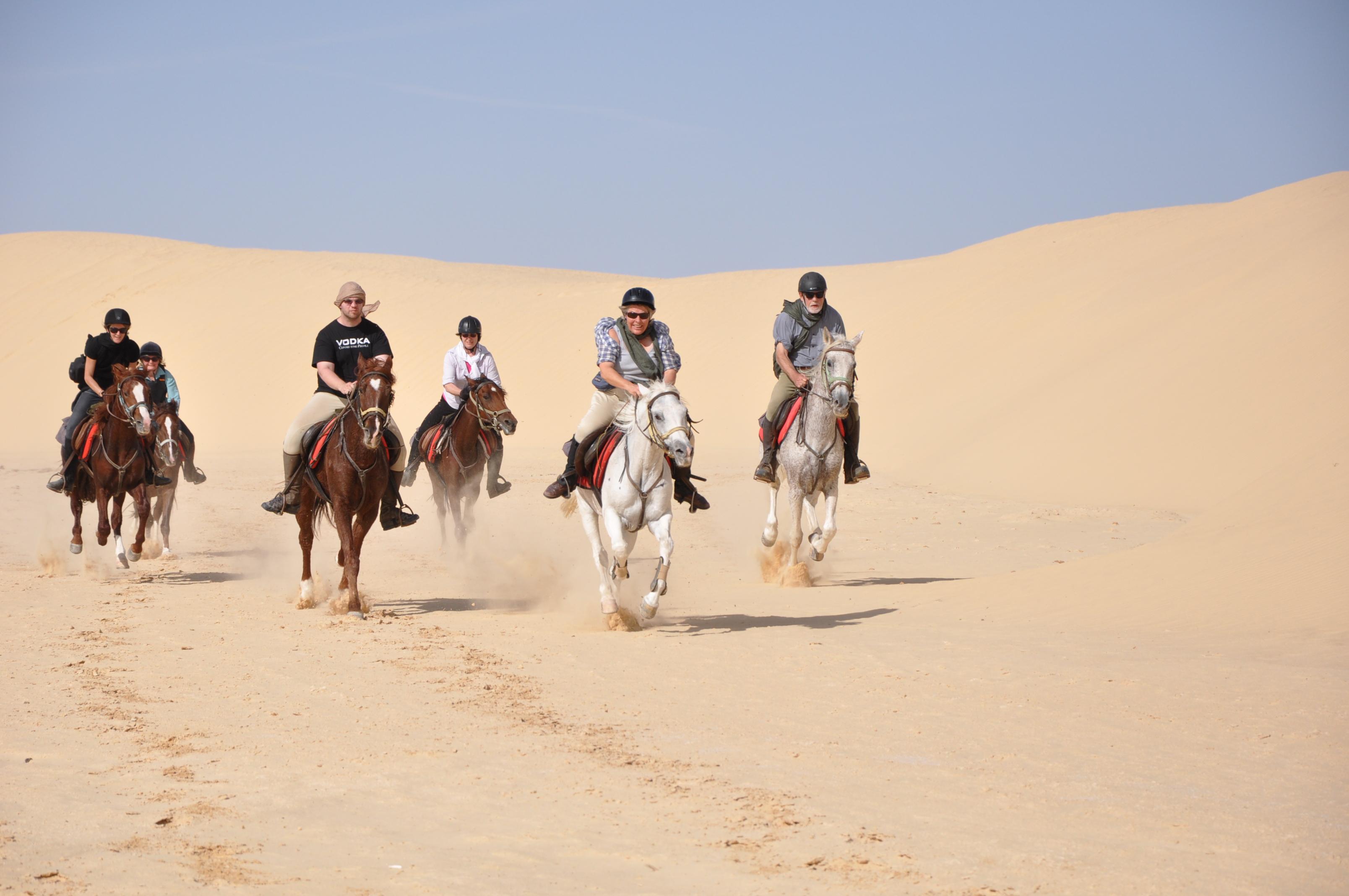 equestrian breaks in tunisia