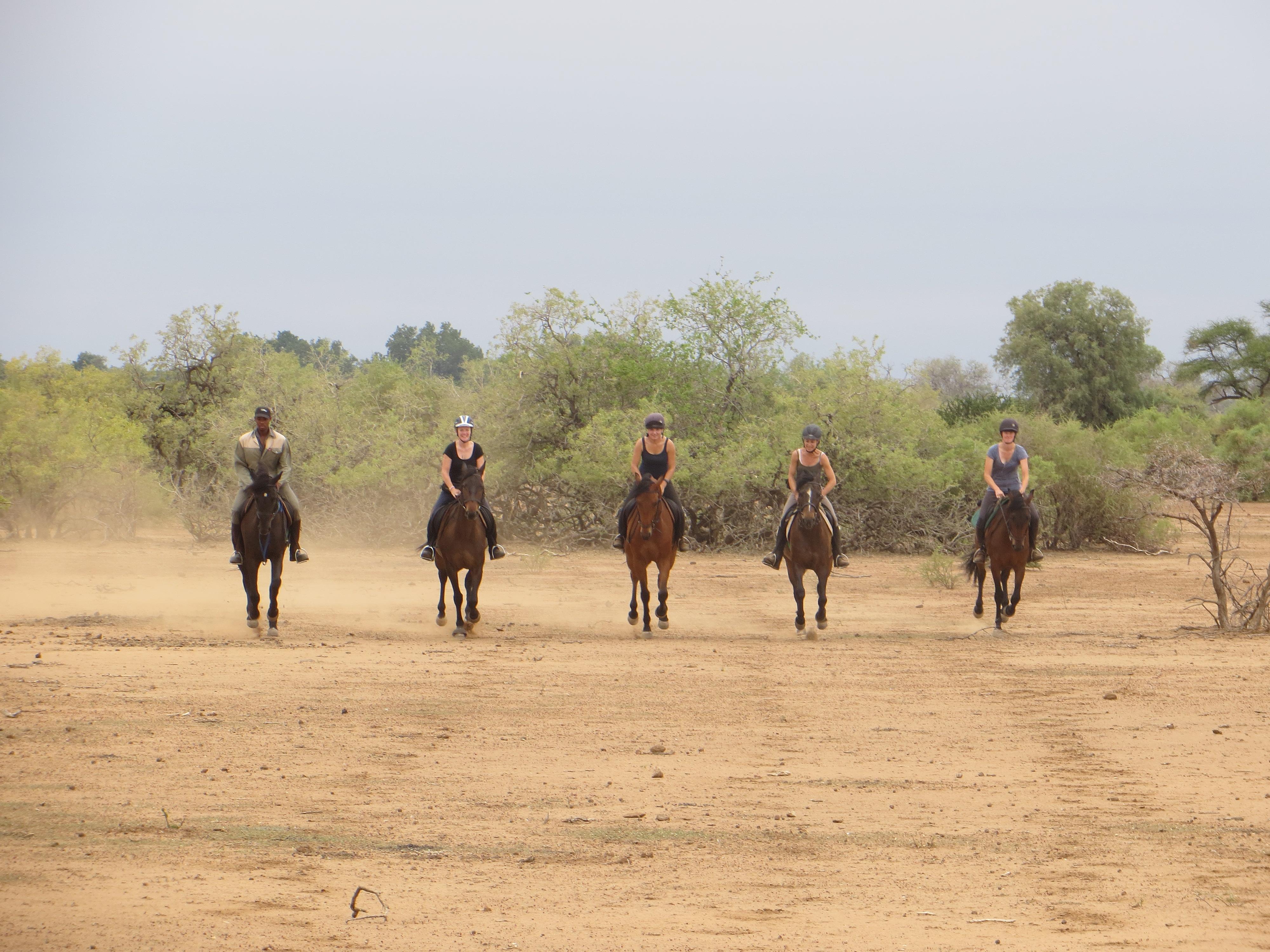 african safari on horseback