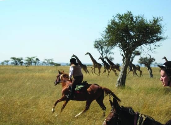 Kenya 06 ITS 045