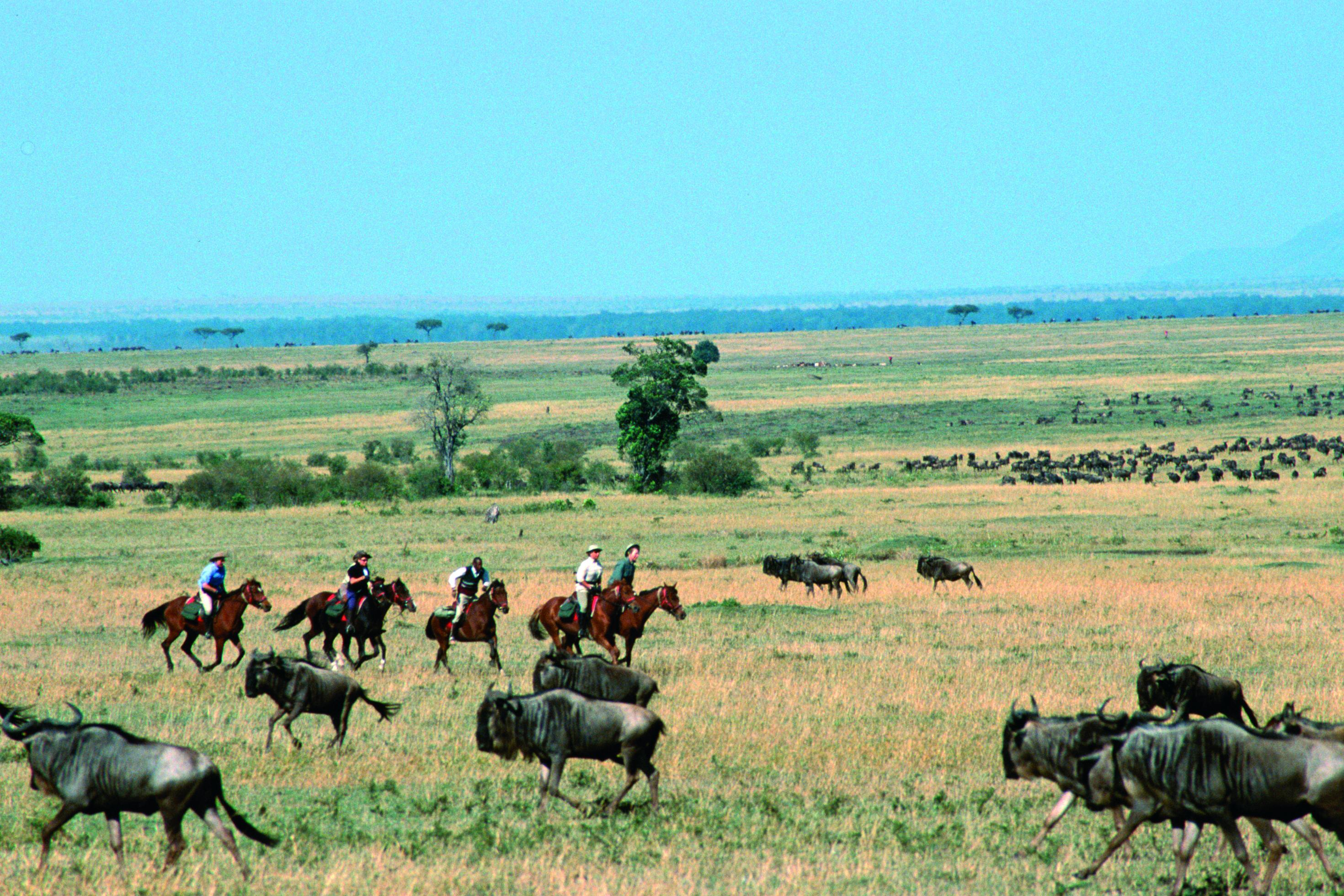 riding in kenya