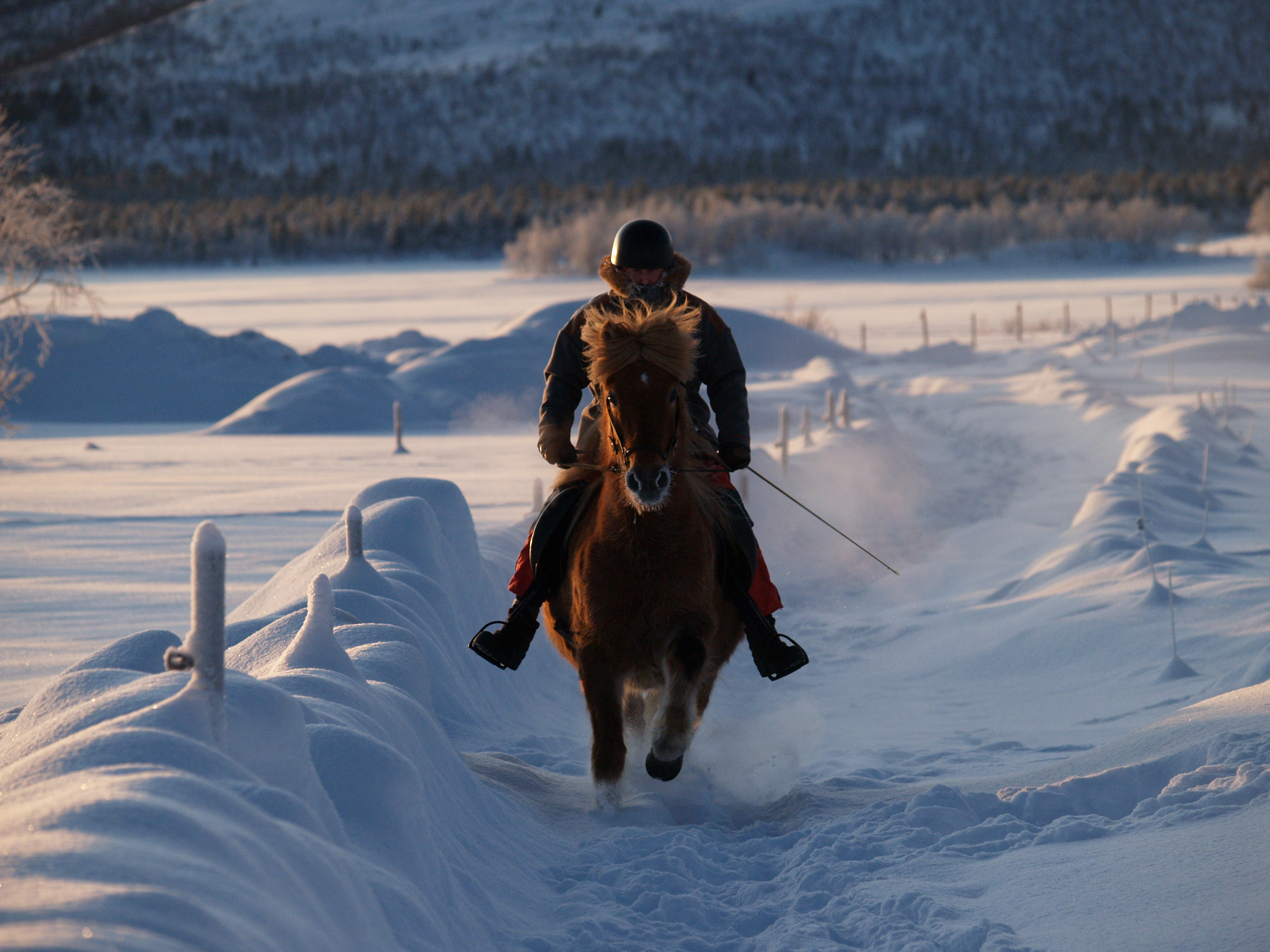 riding holidays with in the saddle