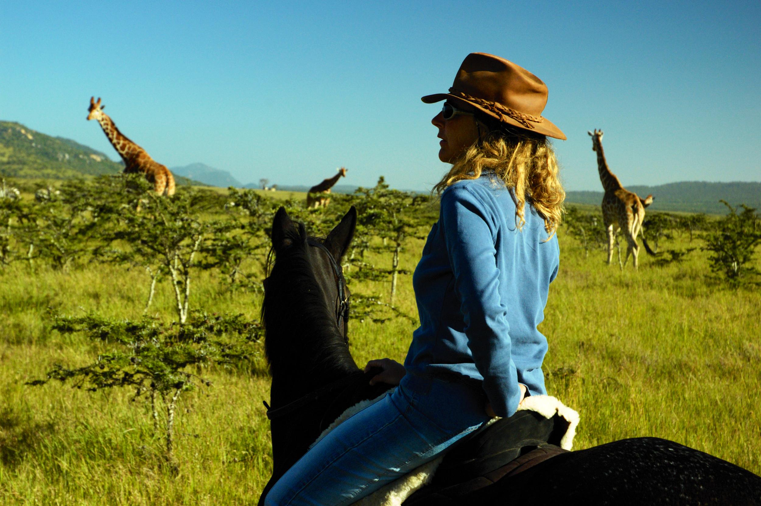 In The Saddle Pole Pole Laikipia horseback safari