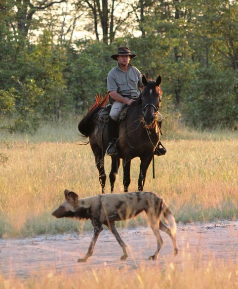 In The Saddle at Motswiri, Botswana email