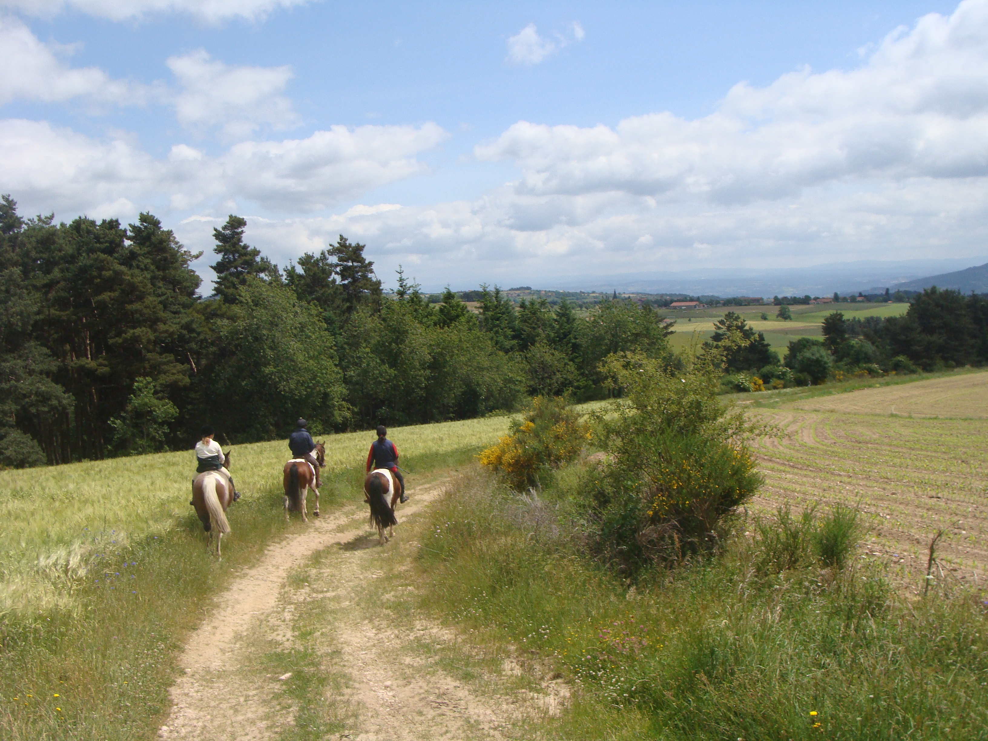 The beautiful landscape of the Auvergne