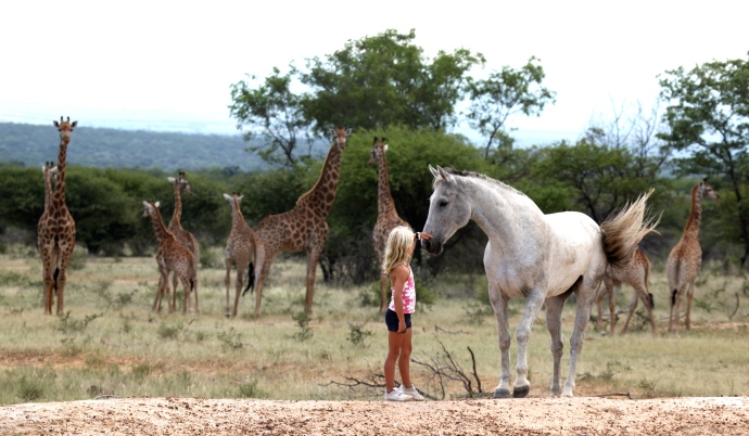 Family safaris (15)