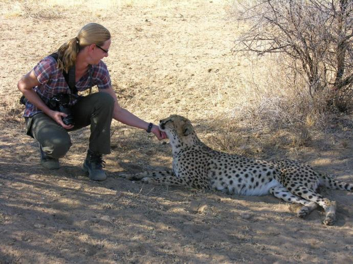 Meeting a cheetah named Kiki