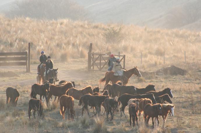Los Potreros is a special equestrian adventure