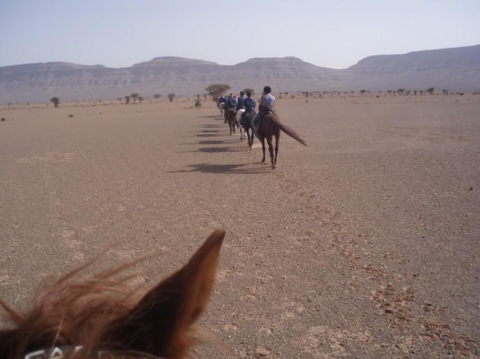 The Desert Trails vary depending on the season