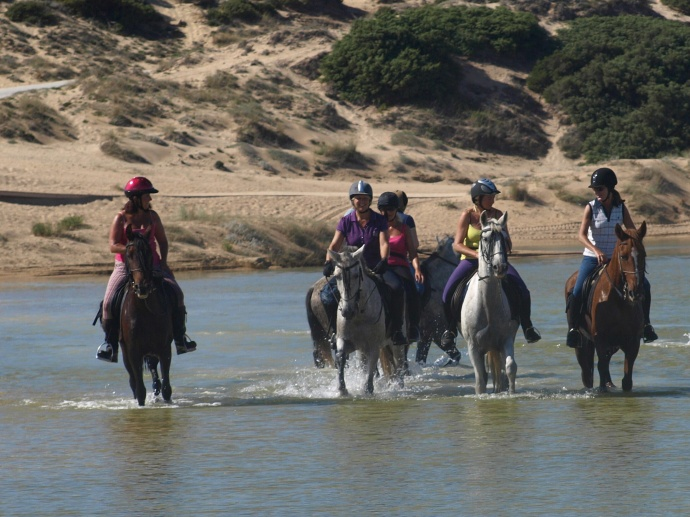 Exhilarating beach rides at Los Alamos