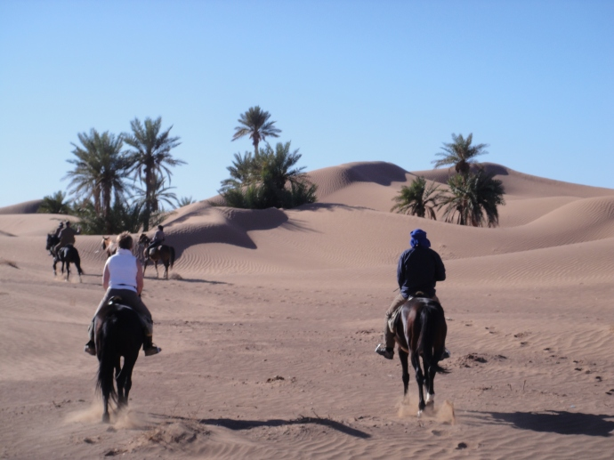 You wouldn't believe you were riding stallions in Morocco