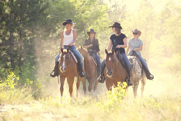 Learn Western Riding in a beautiful location at El Bronco