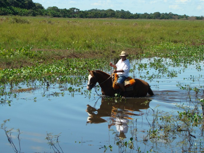 The Pantanal Experience is magical