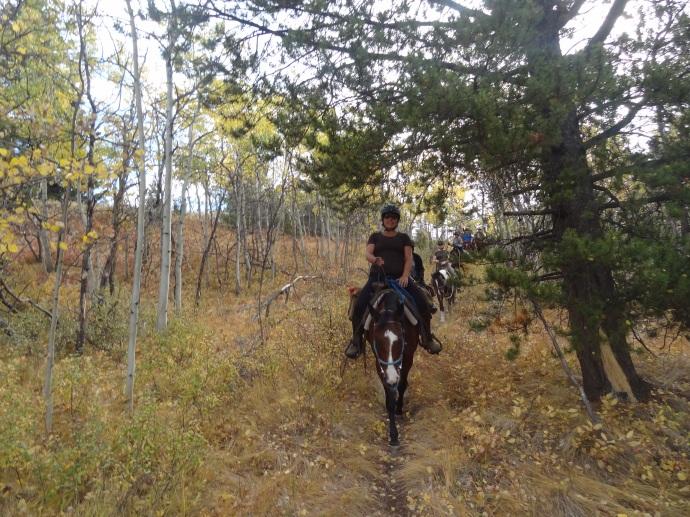Riding through the treeline