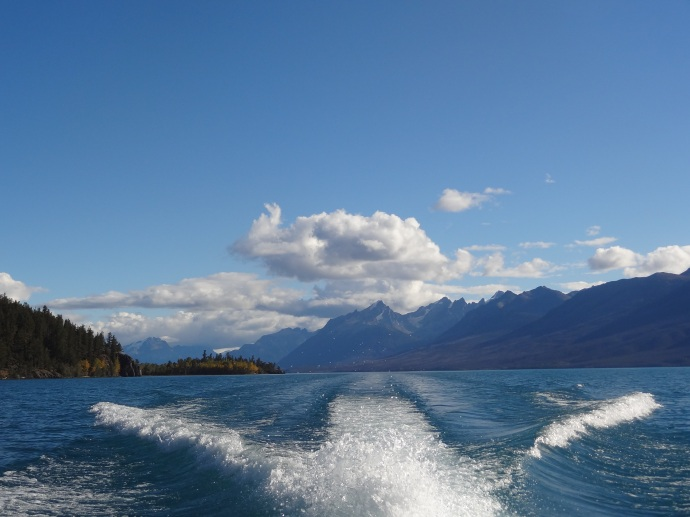Stunning views from the boat trip on Lake Chilko