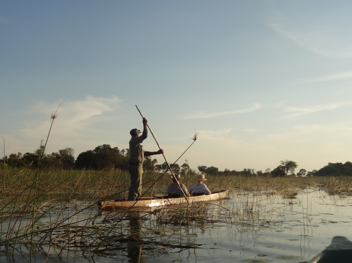 A mokoro trip is a very relaxing way to experience the delta.