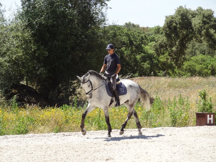 monte velho, Abbie in Monte Velho – Portugal 2015, In The Saddle, In The Saddle
