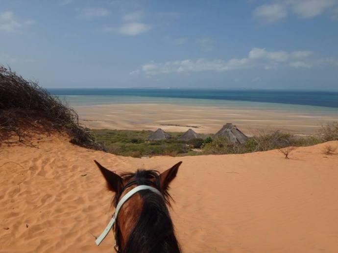 alana dune good - Copy