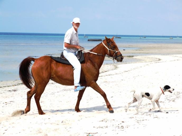 Mozambique Horse Safaris 011